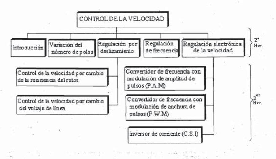 juzgado induccion penal madrid: